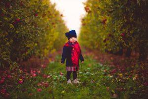 dziecięca sesja w sadzie jesienią